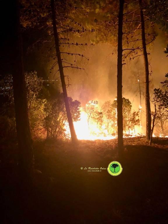 Incendio Casal di Pari sett18