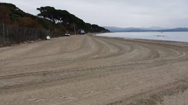 pulizia spiaggia Foll nov18