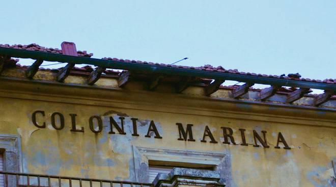 colonia marina gen19