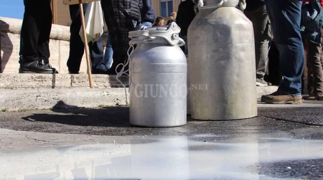 Protesta del latte pastori