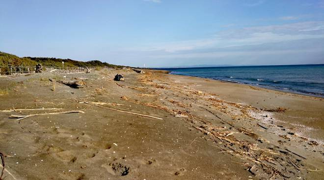 spiaggia pulita Capalbio 2019
