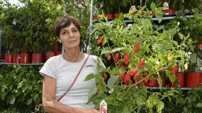 Loretta Teresini