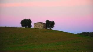 San Donato Maremma Campagna