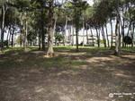 Parco Bagno Gav 2019