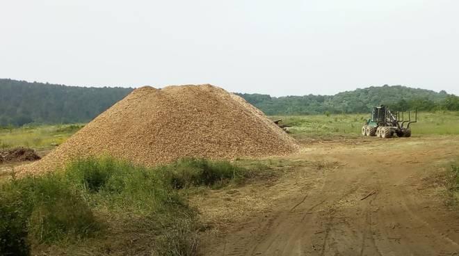 taglio alberi Belagaio comitato val di farma