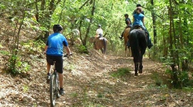 bici - cavallo - attività outdoor