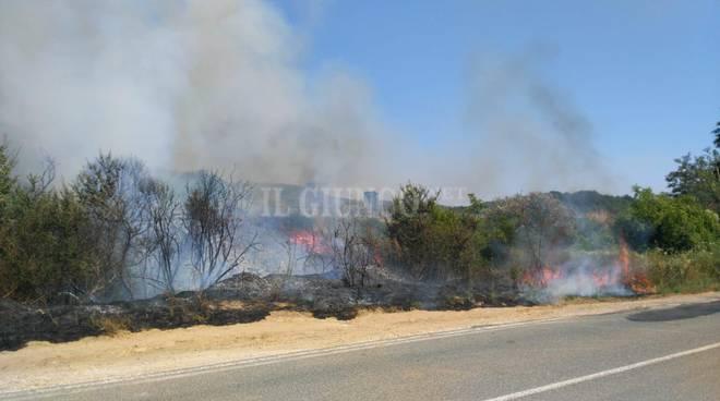 incendio Banditella luglio 2019