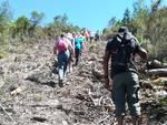 taglio bosco riserva Farma