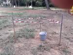 bomba fosforo