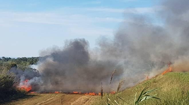 Incendio argine Ombrone 2019