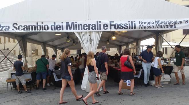 Mostra scambio minerali e fossili