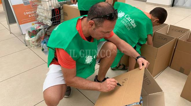 Raccolta di San Lorenzo - agosto 2019