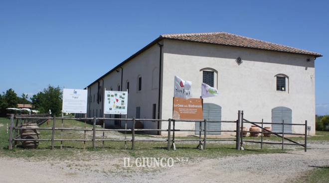 Granaio Lorenese 2019