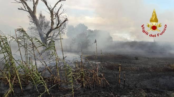 Incendio località Chiocciola 2019