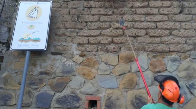 pulizia mura