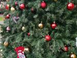 furto decorazioni albero dic19