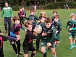 Golfo Rugby Under 10