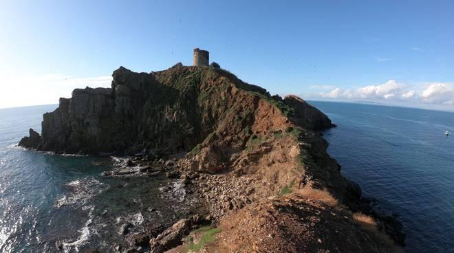 Isola dello Sparviero 2019