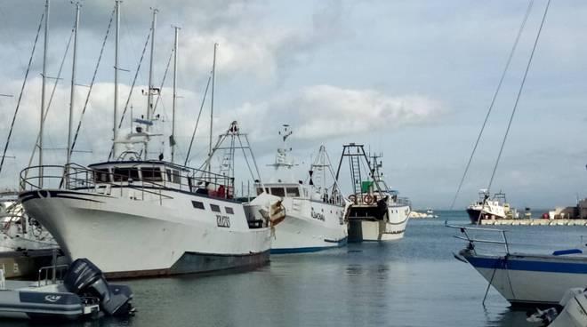 porto pescherecci Punta Ala Cdp