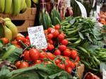 progetto Pesce al Mercato coperto verdura
