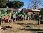 scuola via giotto alberi