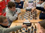 campionato provinciale scacchi under 18