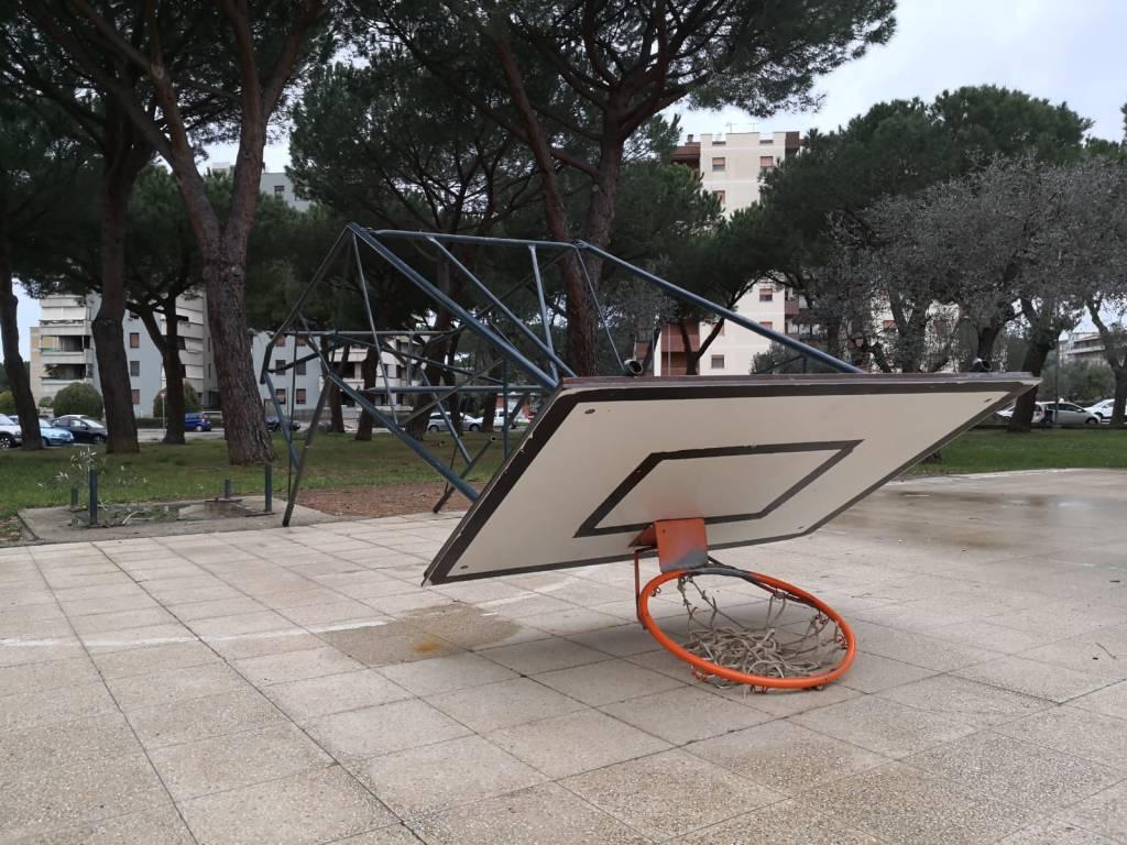 vandali basket