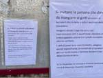 cartelli gattare
