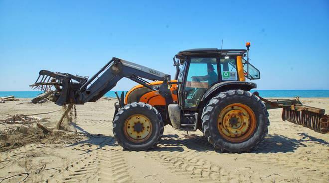 Pulizia delle spiagge - Sei Toscana