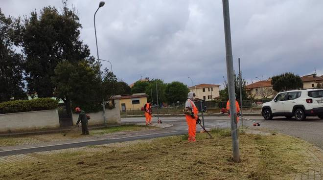 taglio erba puntone - manutenzione del verde