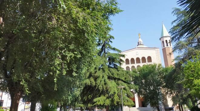 Olmi in piazza Galeazzi davanti al Sacro cuore