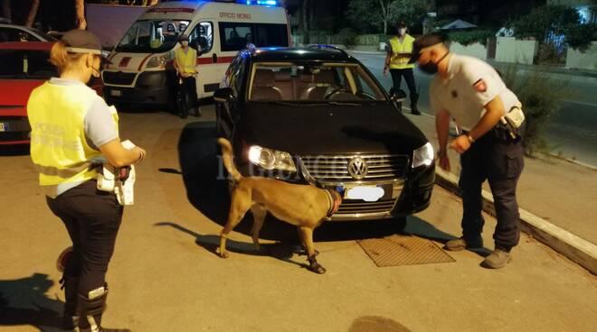 controlli Polizia municipale con cani