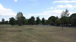 Parco Diversivo 2020