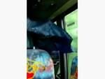 piove autobus