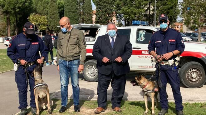 Destroy e Van Basten cani municipale