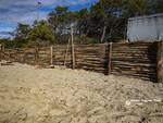 lavori di ripristino e protezione della duna di Pratoranieri