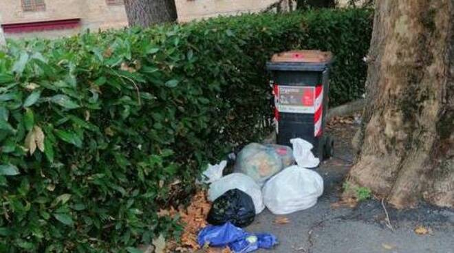 spazzatura degrado rifiuti