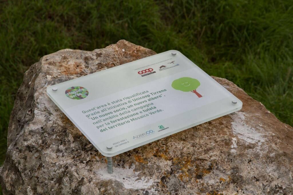 500 nuovi alberi al Parco della Maremma