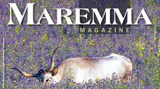 maremma magazine novembre 2020