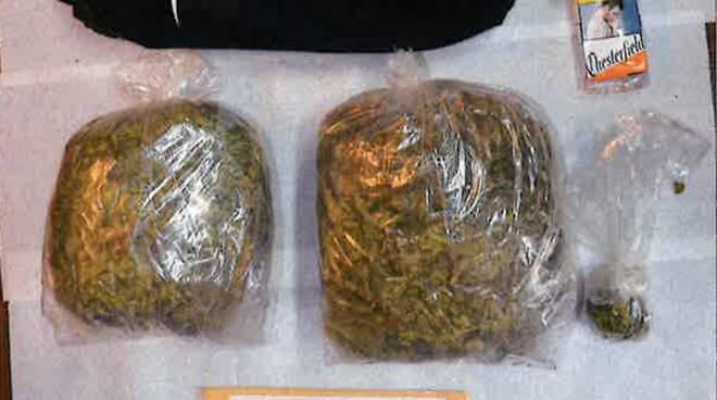 droga marijuana