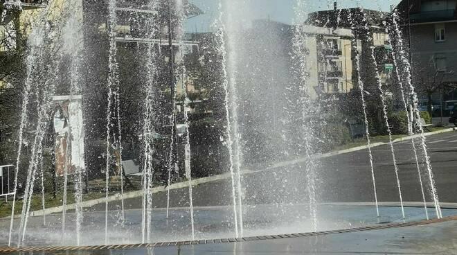 fontana albinia