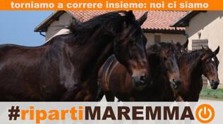 #ripartiMaremma