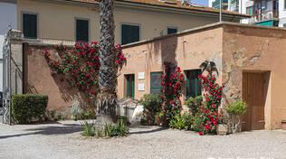 giardino botanico del Palazzo granducale