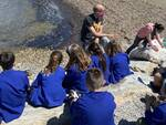 acquario scuola primaria Rodari