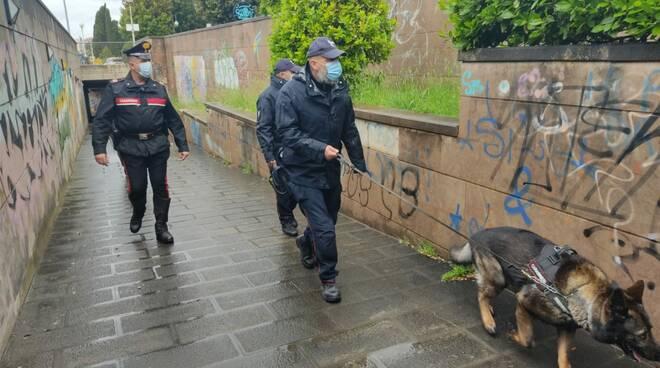 carabinieri spaccio droga - foll.