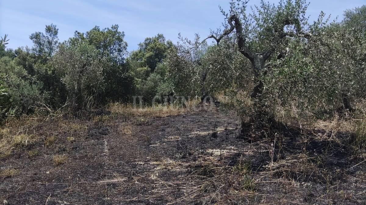 incendio Buriano 11 giugno 21