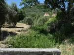 torrente Venacone