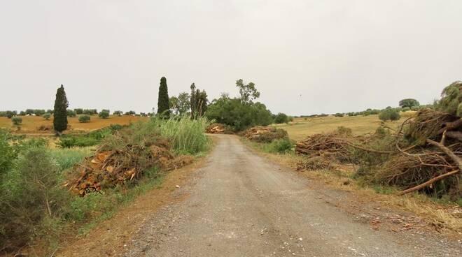 strada vicinale delle Cantine Orbet
