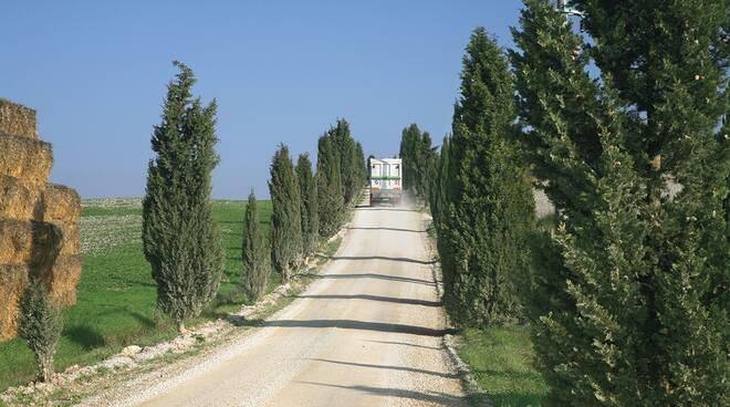 Sei Toscana camion cipressi