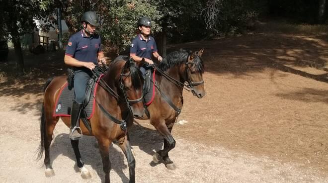 Carabinieri Forestali a cavallo